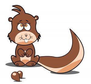 Rysunek wiewiorki