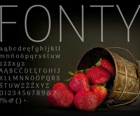 Gdzie szukać fontów?