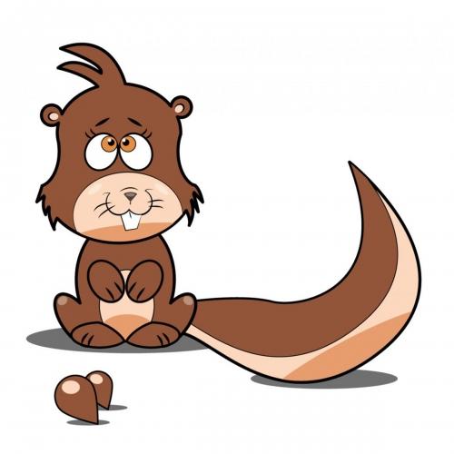 Rysunek wiewiórki