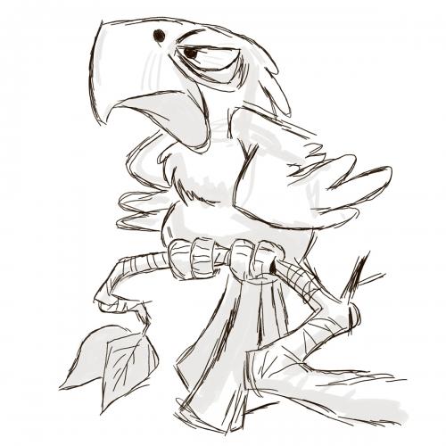 Szkic papugi